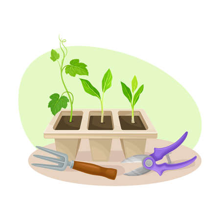 Seedling or Young Plant and Garden Inventory with Iron Rake and Garden Pruner Vector Composition