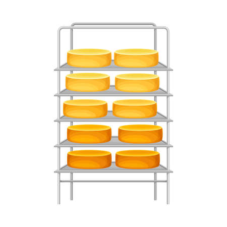 Cheese Wheels or Head Rested on Metal Rack Vector Illustration