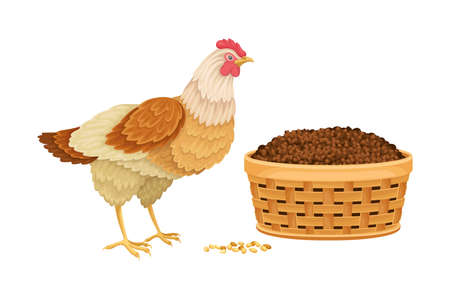 Hen and Chicken Manure in Basket as Organic Fertilizer for Soil and Plant Growth Vector Illustration