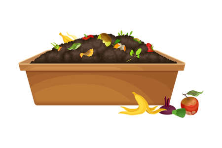 Rotten Fruit and Vegetables Piled in Wooden Crate as Organic Fertilizer for Soil and Plant Growth Vector Illustration 向量圖像