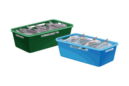 Fish Catch Rested in Plastic Box Isolated on White Background Vector Illustration Vecteurs