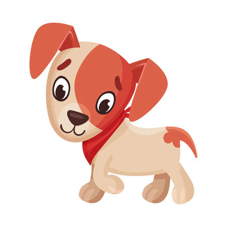 Jack Russell Terrier Character Walking and Wriggling Tail Vector Illustration Ilustração