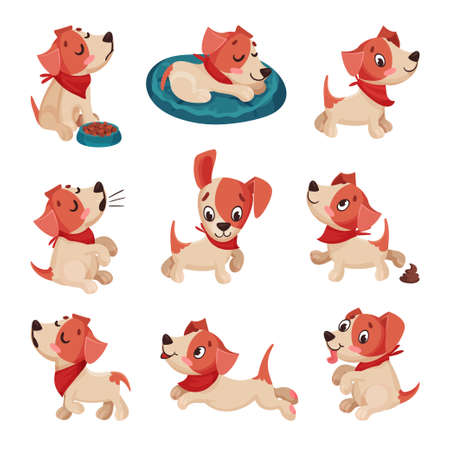 Funny Jack Russell Terrier Character Wriggling Tail, Running and Sitting Vector Set
