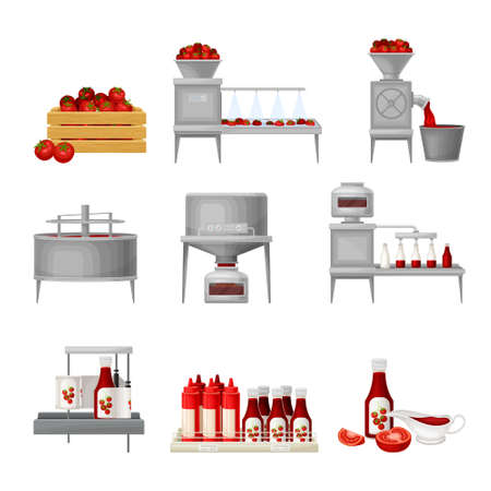 Ketchup Manufacturing Process with Tomato Harvesting, Washing and Squeezing Vector Illustration Set Banco de Imagens