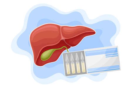 Liver and Glass Medical Ampoules in Carton Package as Pharmaceutical Drug Vector Composition 일러스트