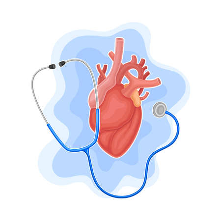 Heart and Stethoscope as Medical Equipment for Heartbeat Examination Vector Composition