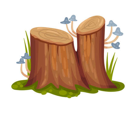 Wooden Stump with Mushrooms Growing on It as Forest Element Vector Illustration