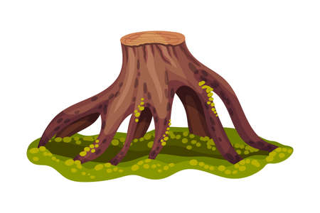 Stump or Tree Stub with Roots Covered with Green Moss as Forest Element Vector Illustration Illusztráció