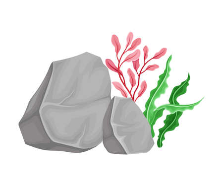 Angulated Sea Stone or Subsurface Rock with Seaweeds and Algae Vector Composition Vector Illustration