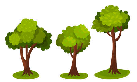 Tree with Exuberant Green Foliage and Trunk Vector Illustration Vettoriali
