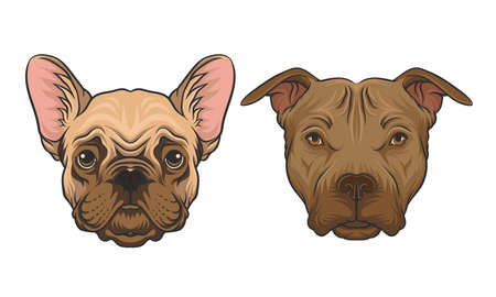 Bulldog and Pit Bull Terrier Muzzle with Fur Vector Set
