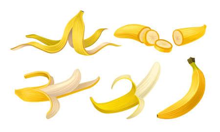 Peeled Yellow Banana as Exotic Fruit Vector Set