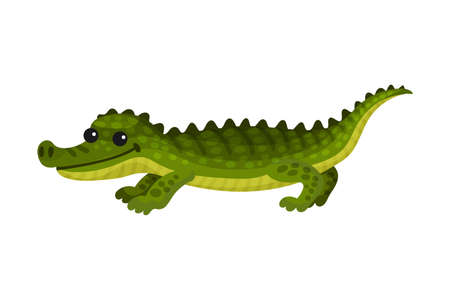 Alligator Crocodile with Long Tail and Sharp Teeth as African Animal Vector Illustration