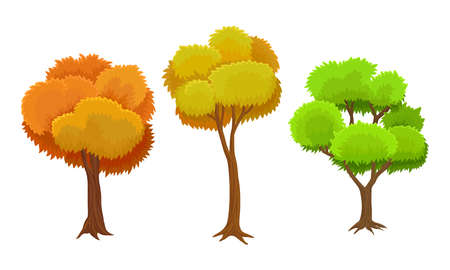 Tree with Green and Orange Crown as Perennial Plant with Trunk, Branches and Leaves Vector Illustration Set