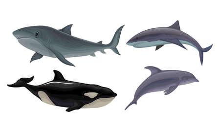 Marine Habitant with Dolphin and Shark Vector Set Ilustracje wektorowe