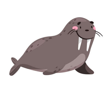 Walrus with Tusks as Sea Animal Floating Underwater Vector Illustration