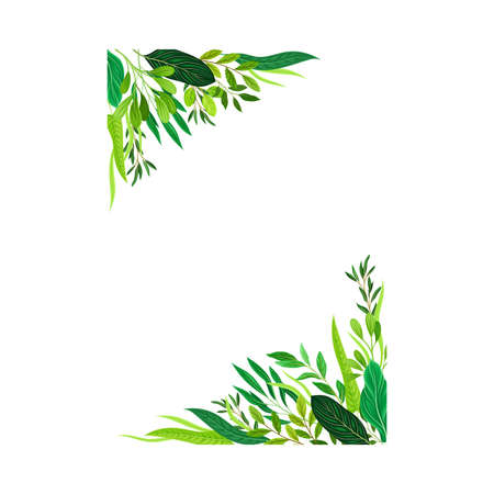 Frame Corners with Green Leaves or Foliage Vector Illustration