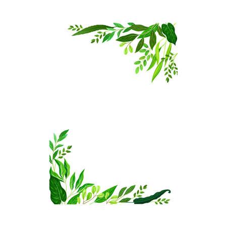 Frame Corners with Green Leaves or Foliage Vector Illustration Ilustração Vetorial