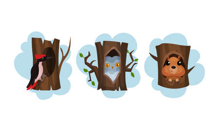 Funny Animals Sitting in Tree Hollow Vector Set