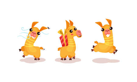 Cute Llama or Alpaca Animal Running and Carrying Gift Box Vector Set