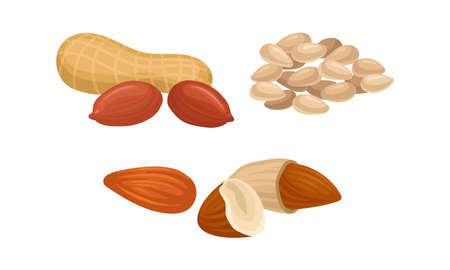 Raw Nuts as Edible Seeds in Pod and Hulled Vector Set Ilustracja