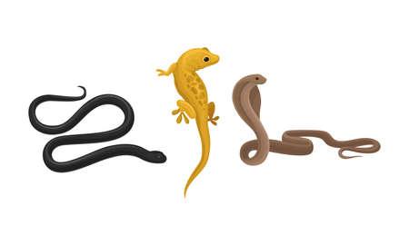 Snakes and Lizard as Carnivorous Reptiles Vector Set