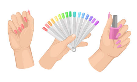 Female Hands Manicure with Painted Nails with Lacquer Vector Set