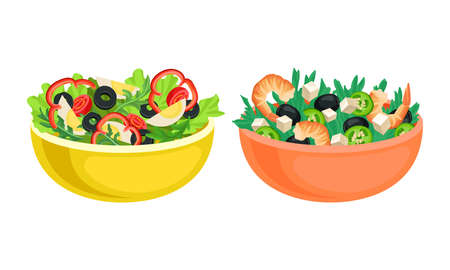 Fresh Salads in Bowl with Mixed Ingredients Vector Set