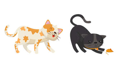 Playful Cats Walking and Playing with Toy Mouse Vector Set