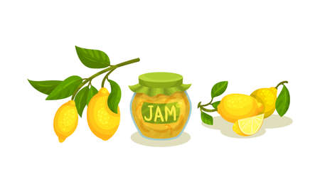 Lemon Tree Branch and Jam Canned in Glass Jar Vector Set 向量圖像