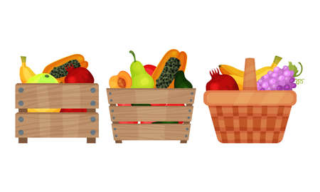 Sweet Tropical Food with Papaya and Banana Bunch in Basket and Wooden Crate Vector Set