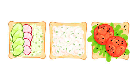 Toasts With Different Ingredients Top View Vector Set