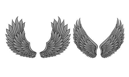 Heraldic Wings with Feathers Isolated on White Background Vector Set 矢量图像
