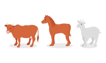 Horse with Mane and Horned Cow as Farm Animal Vector Set