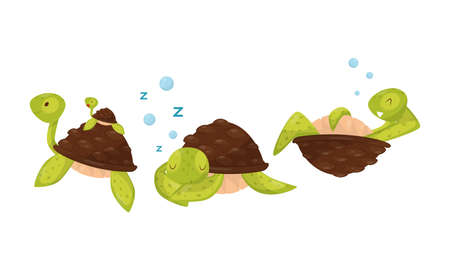 Funny Turtle Floating Underwater with Its Baby and Sleeping Vector Set