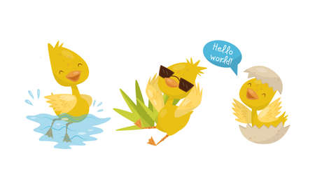 Cute Yellow Duckling Swimming in Water, Hatching and Wearing Sunglasses Vector Set 矢量图像