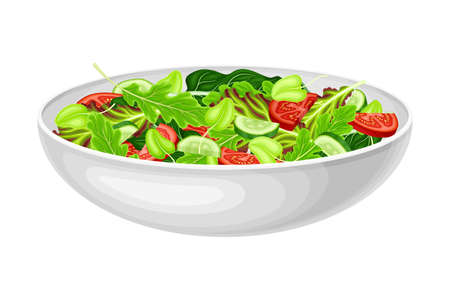 Vegetable Salad with Lettuce and Tomato Vector Illustration