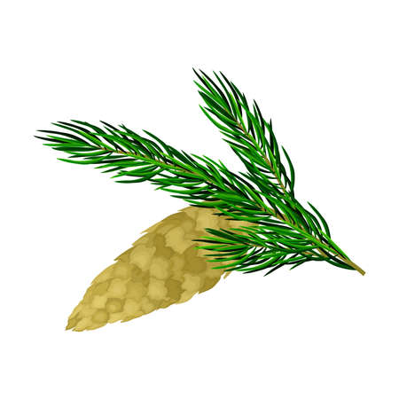 Pine Twig with Needles and Hanging Cone Vector Illustration