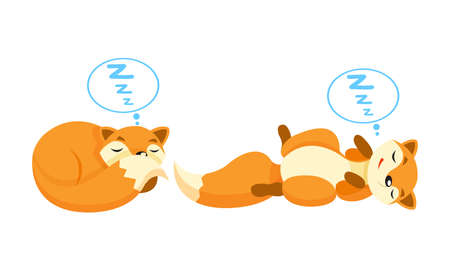 Cute Orange Fox Cuddling and Sleeping Vector Set Ilustração