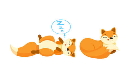 Cute Orange Fox Cuddling and Sleeping Vector Set Çizim