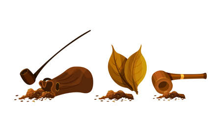 Smoking Wooden Pipe and Dry Tobacco Leaves Vector Set