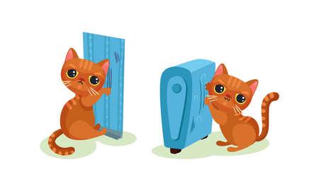 Naughty Playful Kitten Scratching Wallpaper and Radiator Vector Set