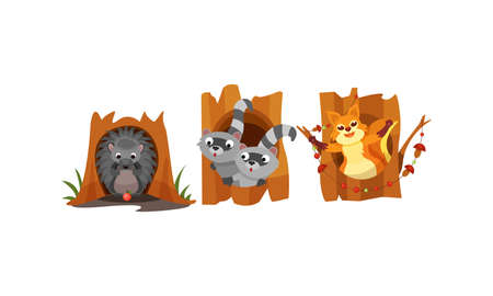 Cute Forest Animals Peepped Out From Their Burrows Vector Set
