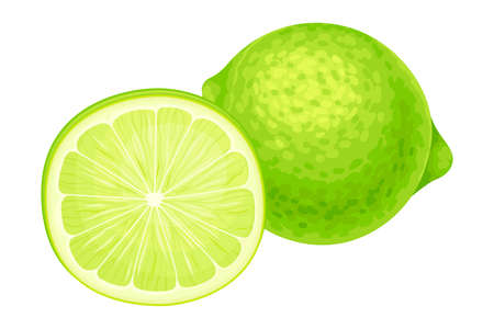 Whole and Halved Lime as Green Round Citrus Fruit Vector Illustration