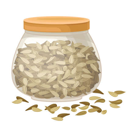 Dried Fennel Fruit as Aromatic Anise-flavored Spice in Jar Vector Illustration