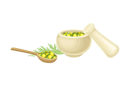Mortar and Pestle with Fresh Wormwood or Southernwood Plant Vector Composition