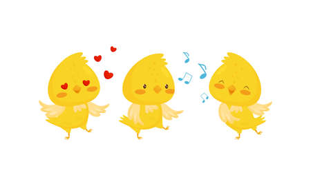 Yellow Chick Feeling Enamored and Singing Vector Set