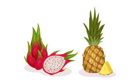 Ripe Exotic Fruits with Dragon Fruit and Pineapple Vector Set
