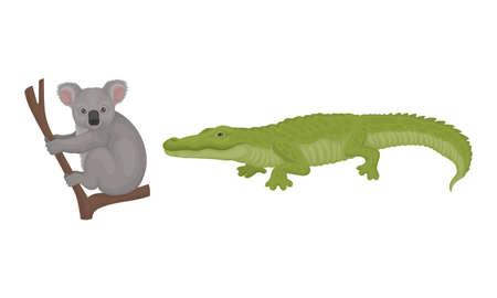 Grey Koala Bear Sitting on Branch and Crocodile as Australian Animals Vector Set