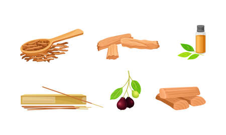 Sandalwood Timber and Wood Material with Fragrant Chip and Sticks Vector Set